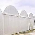 เต็นท์โกดัง ทรงโค้ง กว้าง 4เมตร ยาว8เมตร สูง2.5เมตร