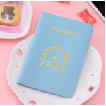 Passport Cover Baby Blue