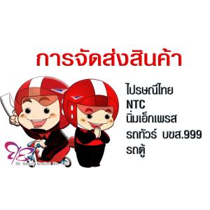 การจัดส่งสินค้า : ไปรษณีย์ไทย / NTC / นิ่มเอ็กเพรส / รถทัวร์ บขส.999 / รถตู้