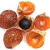 หัวน้ำหอม กลิ่น soap nut 002338