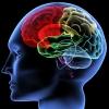 เรื่องจริง การปั่น จักรยาน เพิ่มประสิทธิภาพของสมอง !