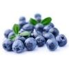 หัวน้ำหอม Blueberry 0002898