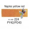 Van Gogh Watercolor 10 mL - 224 Naples Yellow Red