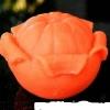 แม่พิมพ์ รูปส้มปอก 130g