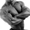 คนใช้ เครื่องออกกำลังกาย fitness เล่นกล้าม ทานโปรตีนมากไปไม่ดีนะ