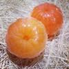 แม่พิมพ์ รูปส้ม 100g