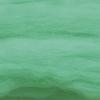 สี J055-Peppermint