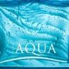 หัวน้ำหอมกลิ่น blue aqua 003160