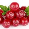 ผงสครับ Cranberry 100g
