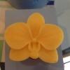 แม่พิมพ์ รูปดอกกล้วยไม้ 50g