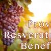 Resveratrol pro 25g สารปรับสีผิวให้สว่างใสภายใน 14 วัน