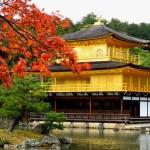 วัดทอง วัดคินคะคุจิ เกียวโต ญี่ปุ่น เรื่องชุด เที่ยวรอบโลก