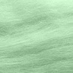สี J028-Wasabi
