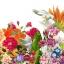 หัวน้ำหอม sweet floral 000871 thumbnail 1