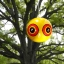บอลลูนตาปีศาจสะท้องแสง วิธีไล่นกพิราบและนกอื่นๆด้วยวิธีธรรมชาติ thumbnail 2