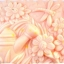 แม่พิมพ์ รูปสวนดอกไม้ 90g thumbnail 1