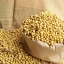 สารสกัดโปรตีนถั่วเหลือง ชนิดน้ำ 100ml thumbnail 1
