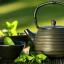 สารสกัด Camellia สารสกัดชาเขียวผสานกับชาขาว thumbnail 1
