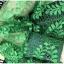 เสื้อเชิ้ตลูกไม้ผสมซีทรู สีเขียว thumbnail 6