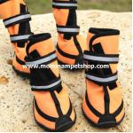 รองเท้าสุนัขโต สีส้ม (L) เบอร์ 6