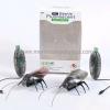 แมลงสาบ RC รุ่นใช้มือถือบังคับ