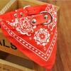 ปลอกคอ ลายผ้าพันคอสามเหลี่ยม สีแดง สุนัขพันธุ์เล็กและแมว