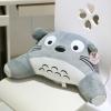 Preorder หมอนรองนั่ง Totoro
