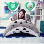 Preorder หมอนหนุน Totoro