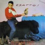 Francesco Salvi - Esatto! (Mix Version)