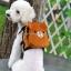 กระเป๋าเป้สุนัข กระเป๋าเป้แมว ลายหมีน้ำตาล thumbnail 2