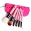 ชุดแปรงแต่งหน้า เซ็ทแปรงแต่งหน้ารุ่นพิเศษ Cerro Qreen six wool makeup brushes sets limited - Pink (6 ชิ้น) thumbnail 1