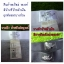 Devid Beckham Briefs ( H&M ) thumbnail 4