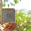 Quiksolar ไฟ LED พลังงานแสงอาทิตย์ รุ่น Minisolar thumbnail 7