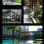 ให้เช่าคอนโด ลุมพินี เพลส รัชโยธิน Lumpini Place Ratchayothin ห้องใหม่ 1 ห้องนอน 1 ห้องน้ำ thumbnail 3