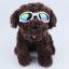 แว่นตาสุนัข สีขาว thumbnail 2