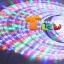 ไฟสายยาง(ท่อกลม) LED 100 m สีรวม thumbnail 3