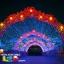 ไฟสายยาง(ท่อกลม) LED 100 m สีขาว thumbnail 48
