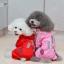 เสื้อกันฝนสุนัข สีแดง thumbnail 1