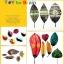 Joan Miro Children's Leaf Art ชุดทำศิลปะใบไม้ thumbnail 4