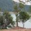 ขายที่ดิน 89 ไร่ sea view ภูเก็ต อ่าวมะขาม ทางไปศรีพันวา thumbnail 6