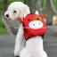 กระเป๋าเป้สุนัข กระเป๋าเป้แมว ลายหมูแดง สำเนา thumbnail 1