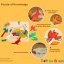 Uncle Wood - 3 layer Jigsaw Puzzle 'Duck Family' ตัวต่อจิ๊กซอว์ไม้-ครอบครัวเป็ด thumbnail 11