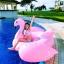 Preorder Flamingo เป่าล่ม thumbnail 2