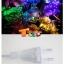 ไฟกระพริบ LED สีรวม thumbnail 9
