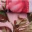 เสื้อแฟชั่น พร้อมส่ง ลายดอกไม้สีแดง เนื้อผ้าย่นๆ คอปก แขนยาว ติดด้วยกระดุมเก๋ๆ thumbnail 5