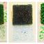 Sensory Seal set of 6 แม่พิมพ์ผิวสัมผัสแปลกๆ 6 แบบ thumbnail 3