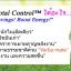 HERBALIFE TOTAL CONTROL thumbnail 2