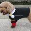 เสื้อผ้าสุนัข แมว thumbnail 3