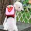 กระเป๋าเป้สุนัข กระเป๋าเป้แมว ลายสตรอเบอร์รี่ thumbnail 1
