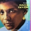 Aaron Neville - The Classic-My Greatest Gift thumbnail 1